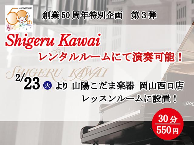 50th-skrental-top-kd.png